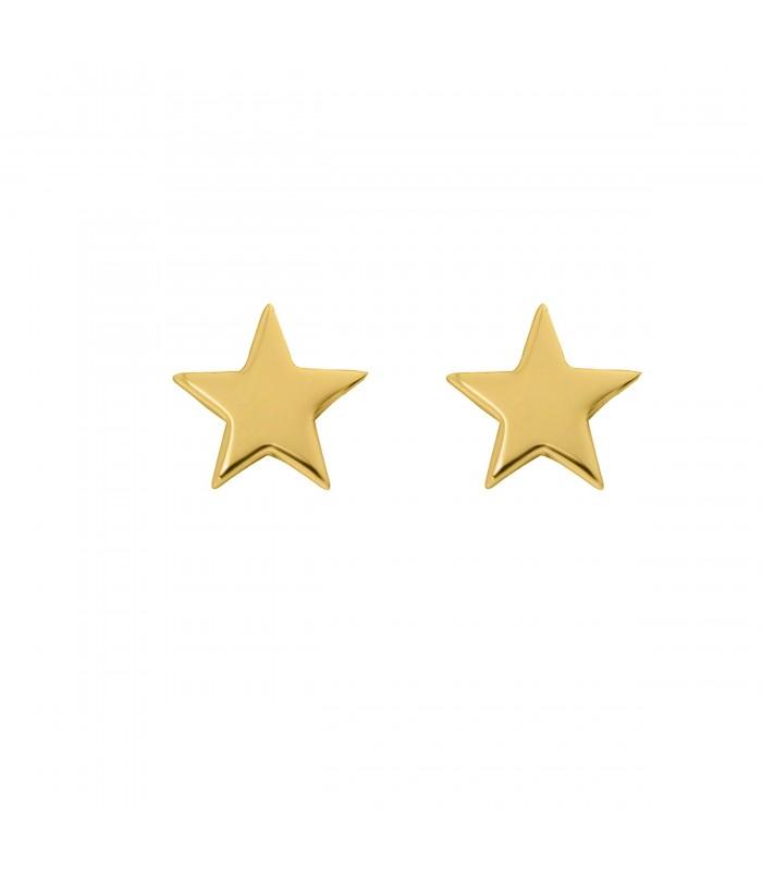 Pendientes  Pendientes Estrella